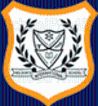 Nelson's International School - logo