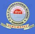 DAV International School Kharghar - logo
