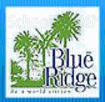 Blue Ridge Public School Hinjewadi - logo