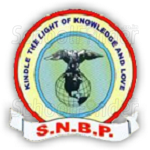 SNBP International School Rahatani - logo
