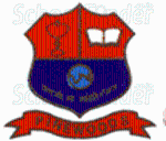 Pinewoods International High School & Junior College - logo