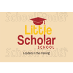 Little Scholar School - logo