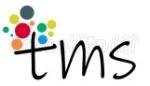 The Motessori School - logo