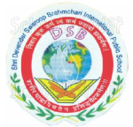 DSB International Public School - logo