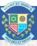 Mount Carmel School Anand Niketan - logo