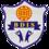 Bloomingdale International School - logo