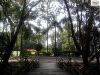 School Gallery for Sinhagad City School Primary