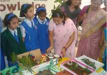 School Gallery for Dr D Y Patil Public School