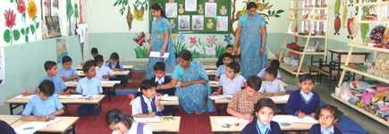 School Gallery for IATV Educational Academy